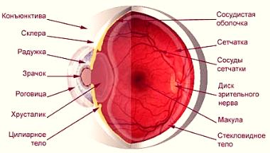 Даосский массаж для глаз