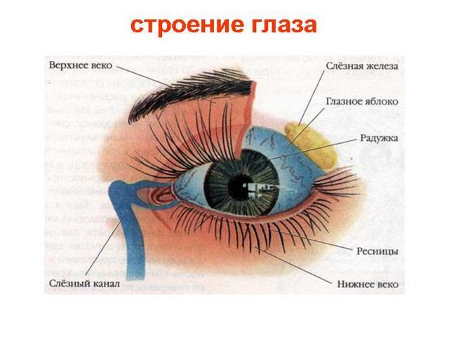 Белые пятна перед глазами - что это, причины и лечение
