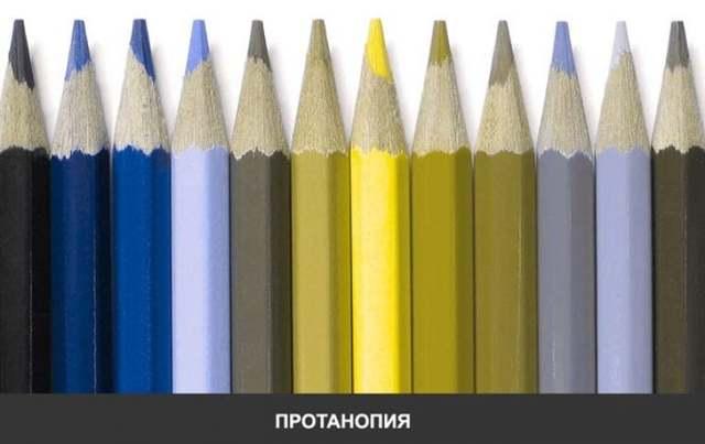 Глаза видят цвета разными оттенками