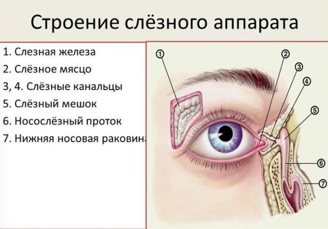 Воспаление сосудов глаза – причины, лечение