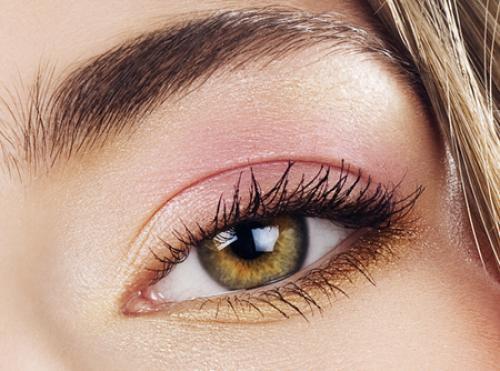 Почему глаз человека различает больше оттенков зеленого, чем других цветов