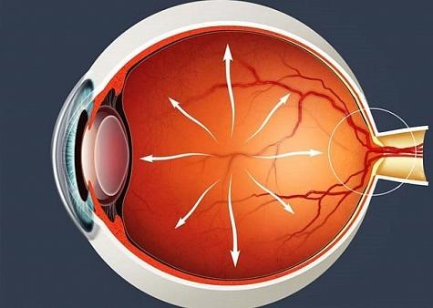 Норма глазного давления - таблица по возрастам