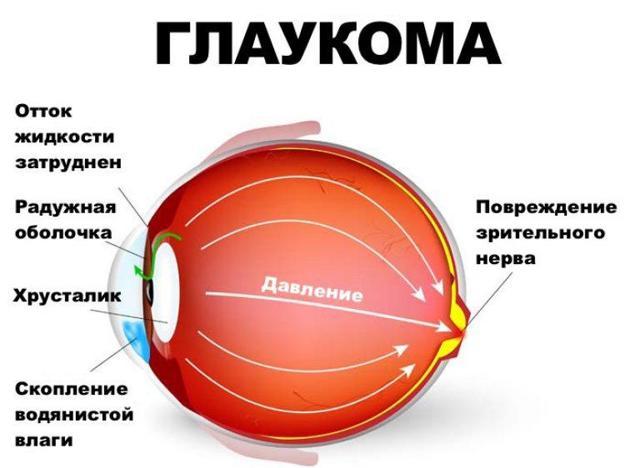 Развитие органов зрения у новорожденных - этапы формирование зрения у детей